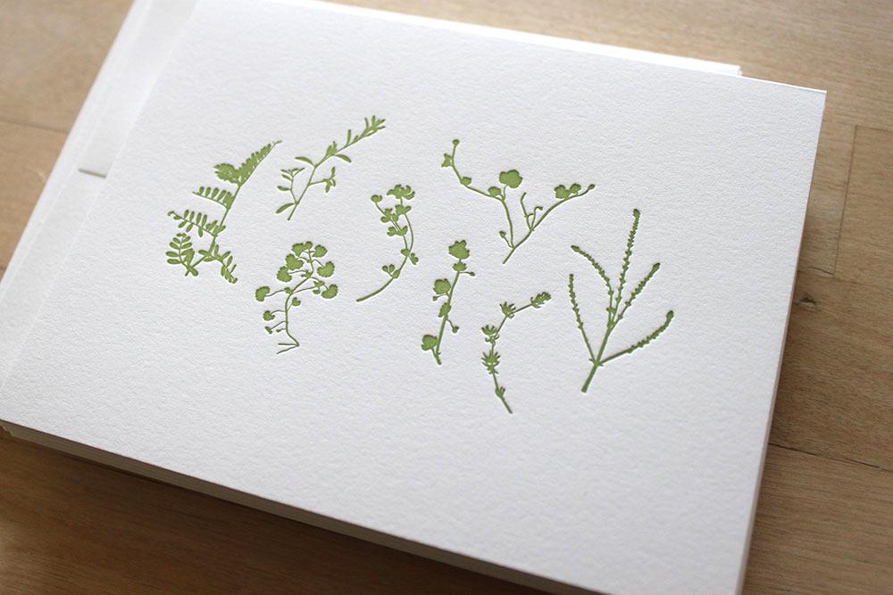 Pressed-Plants-Card-4.jpg