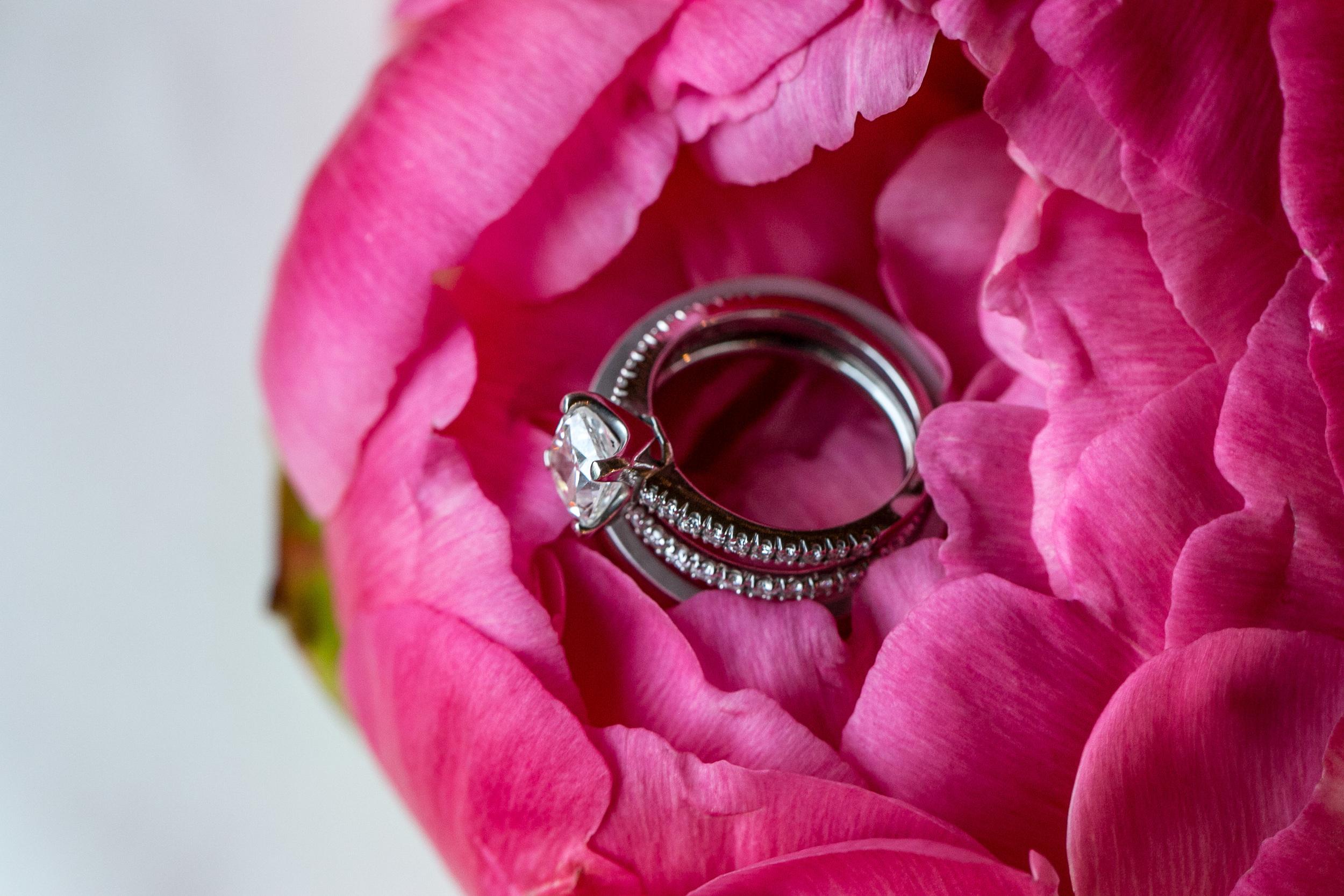 Tracy_Rodriguez_Photography_WeddingPort_TimAnnie_Horz-11.jpg
