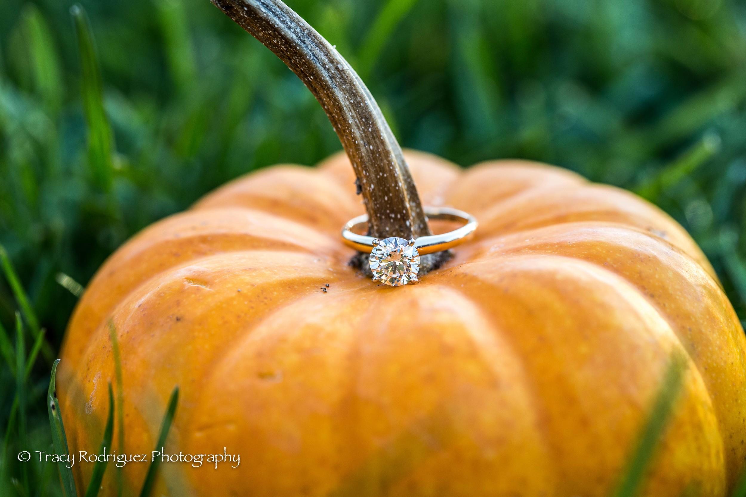 THR-Engagement-AshleyLeBron-5.jpg