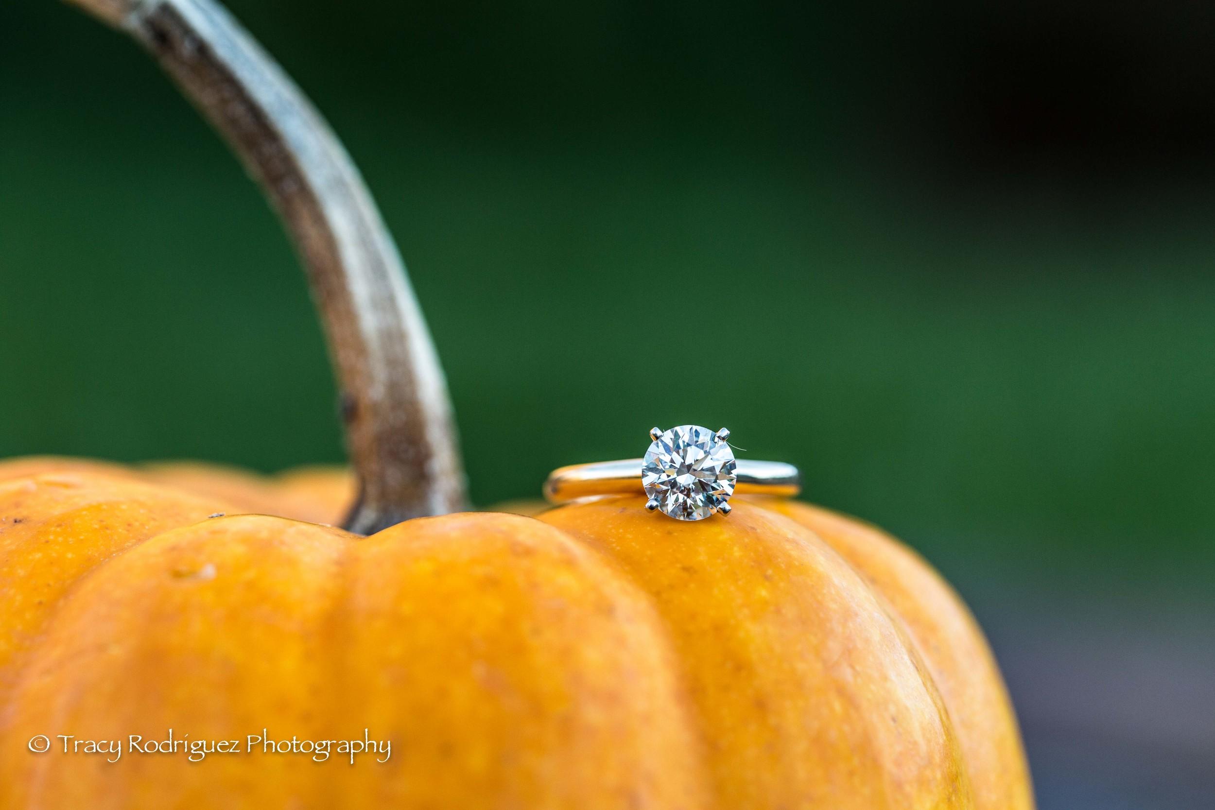 THR-Engagement-AshleyLeBron-6.jpg