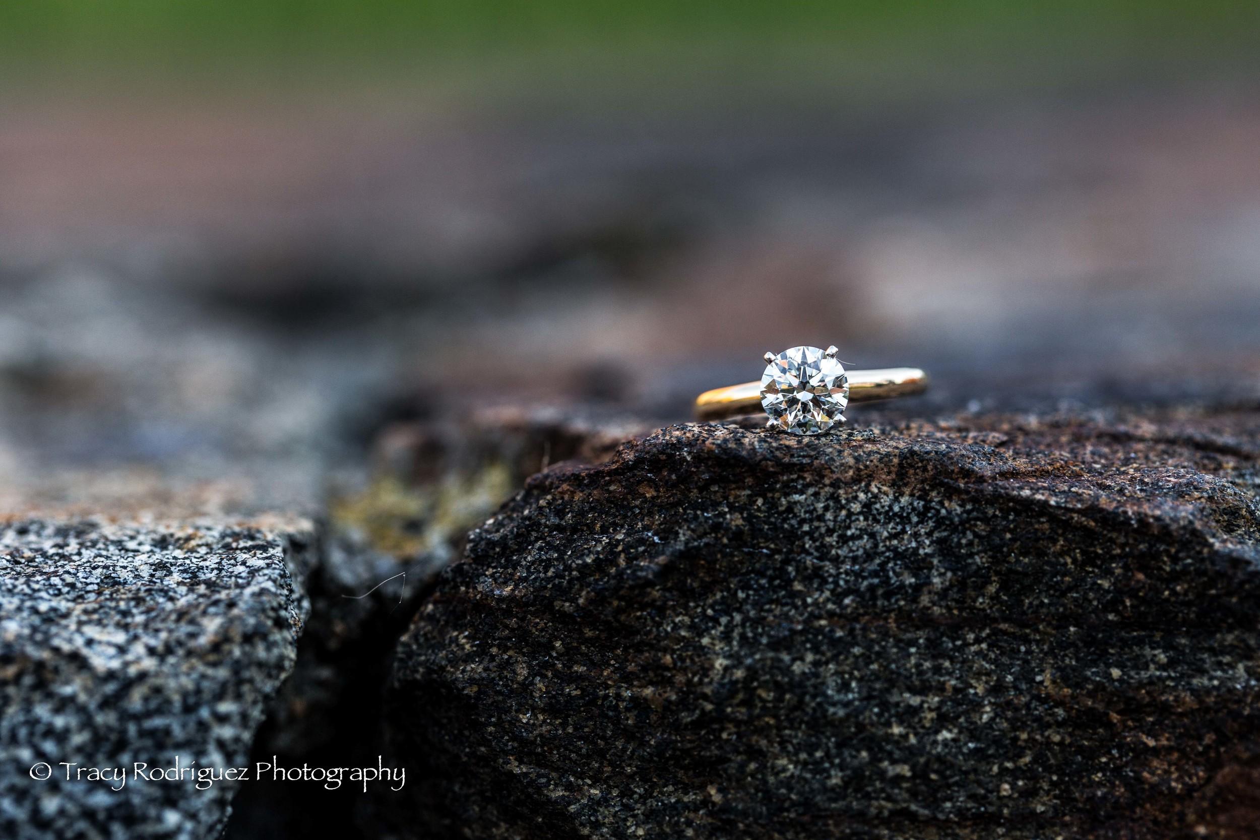 THR-Engagement-AshleyLeBron-7.jpg