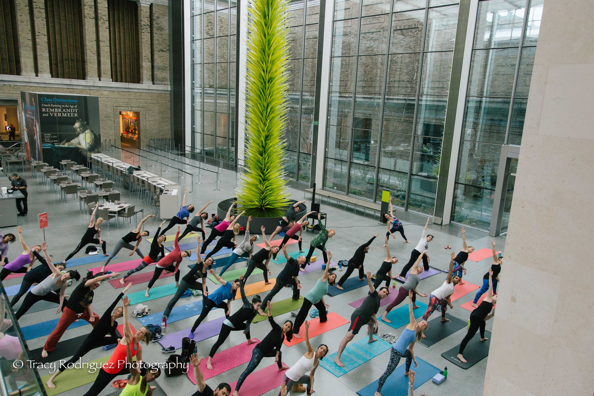 Boston Yoga Photographer at the MFA - Tracy Rodriguez Photography