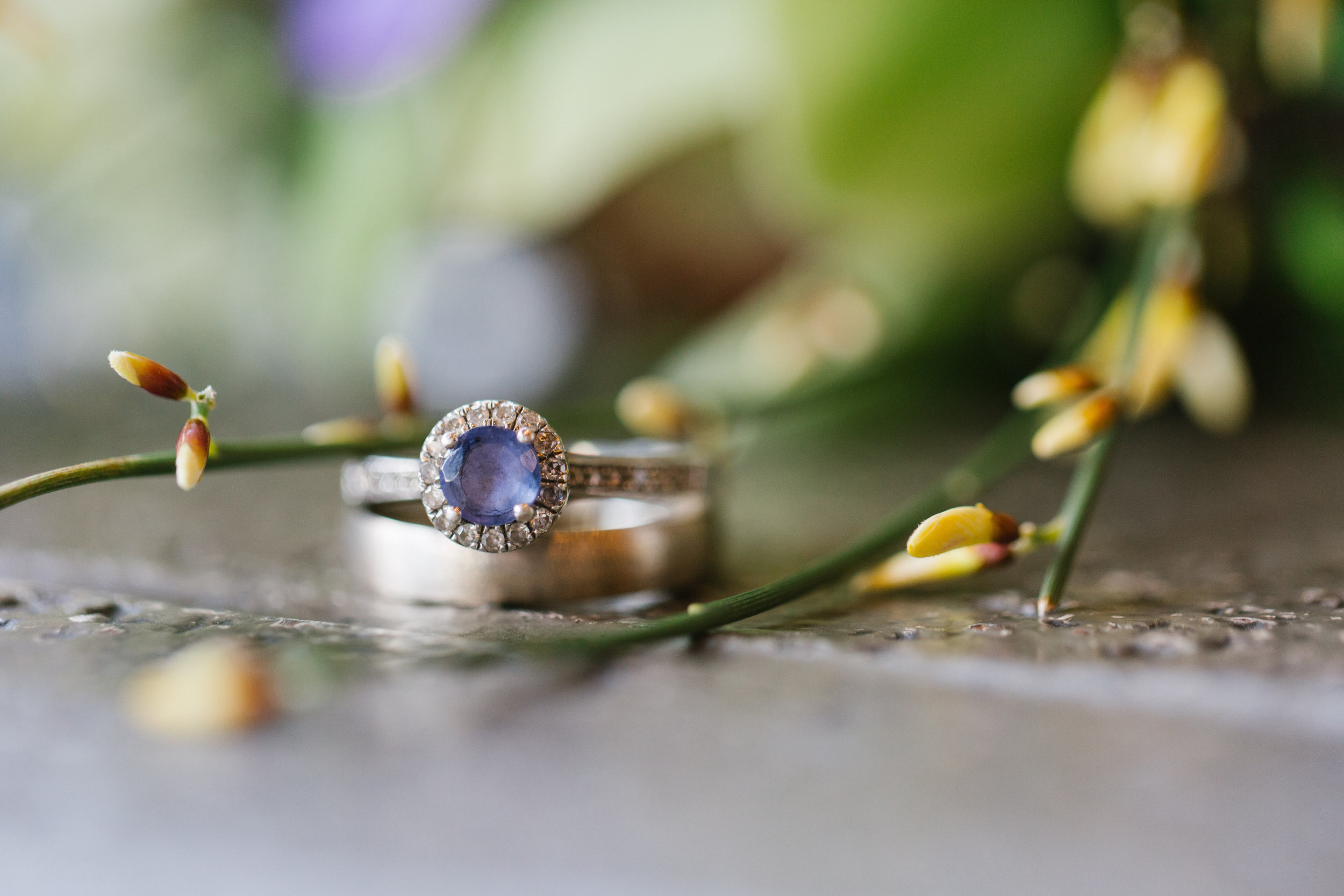 Gorgeous Wedding Rings - Gabrielle and Cesar's Intimate Boston City Hall wedding
