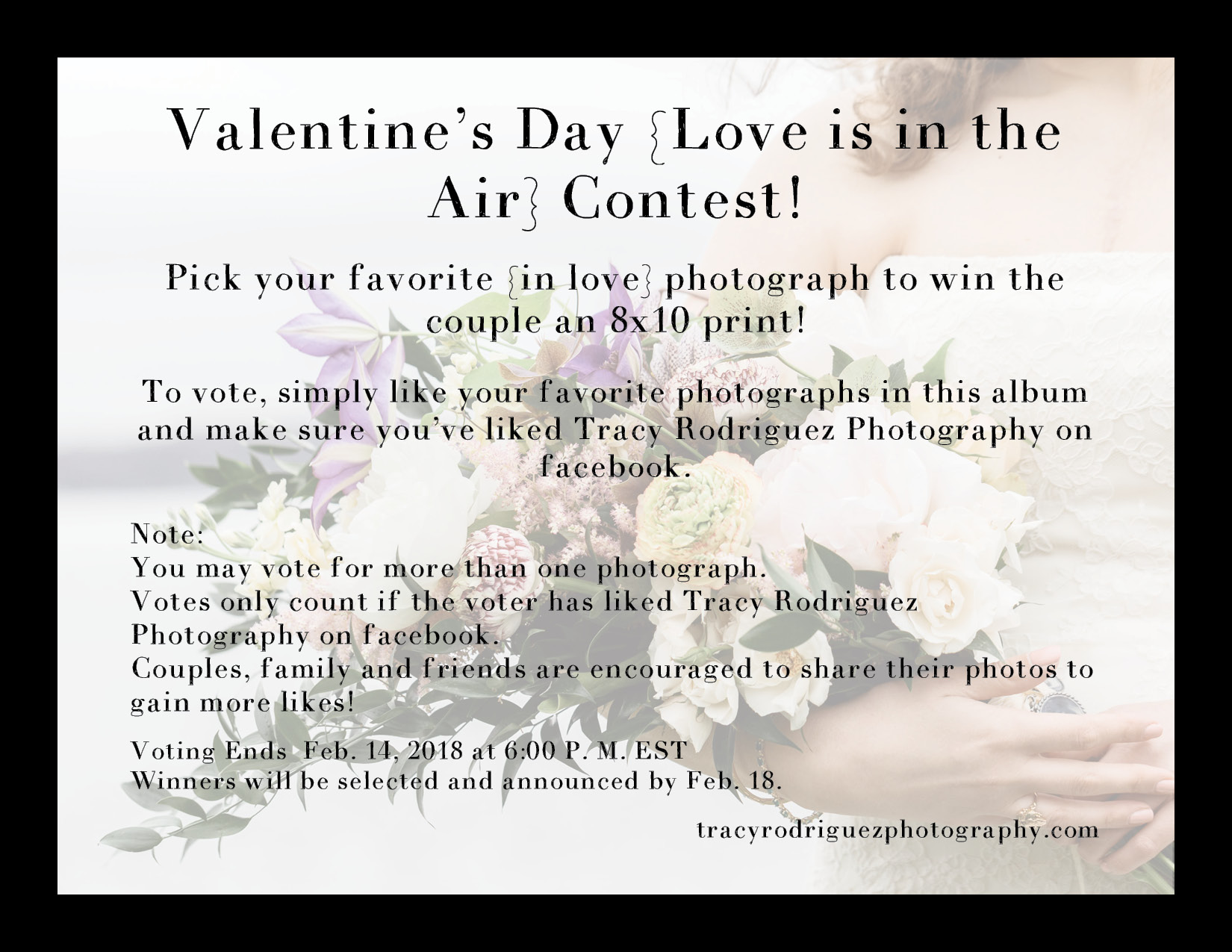 2018 Tracy Rodriguez Photography Valentine's Day Promo.jpg