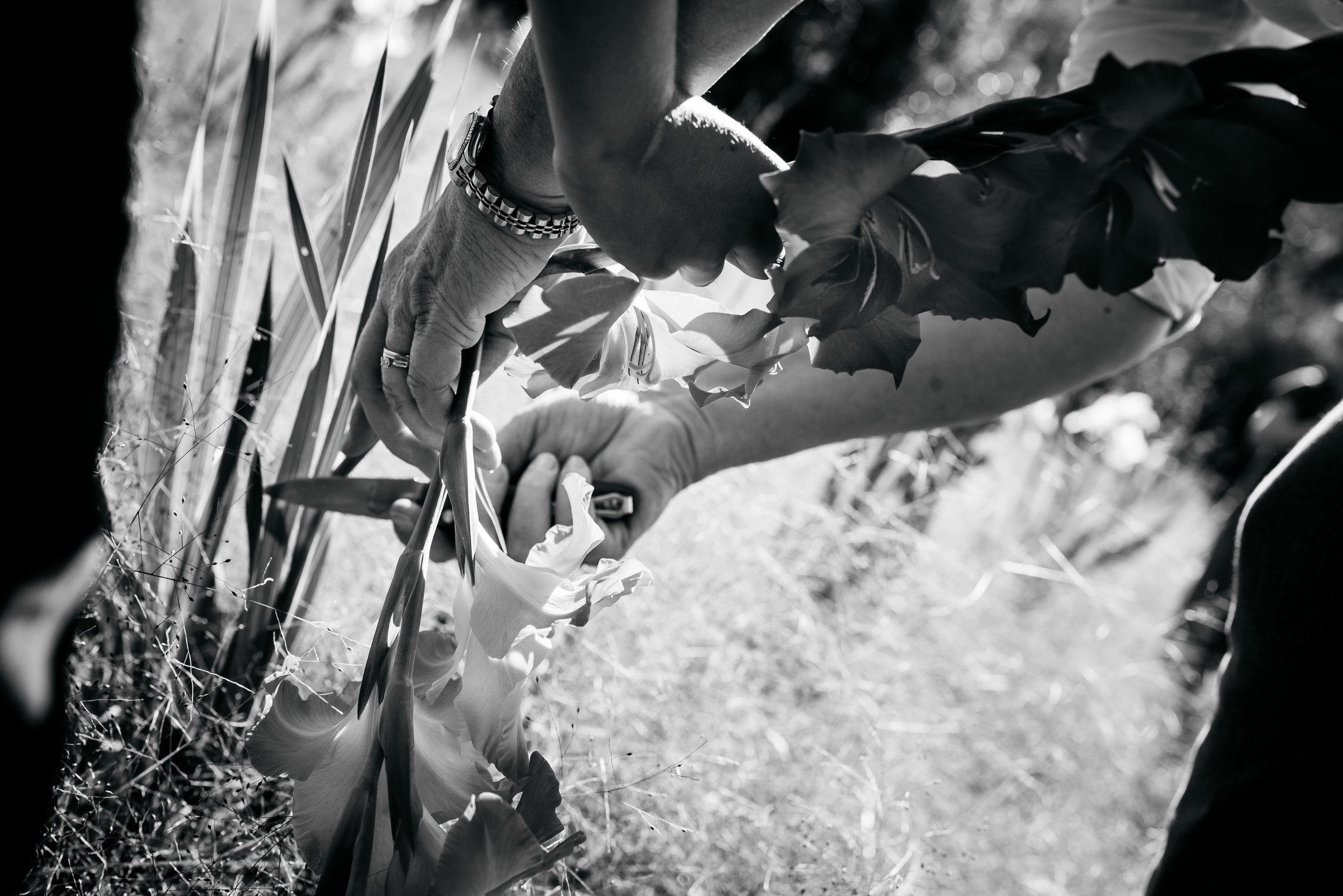 Truchas 10-Year Anniversary Extended Play Documentary Wedding Photography-1.jpg