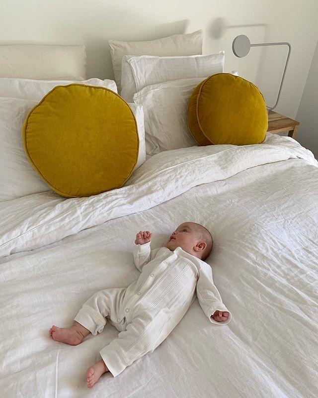 🍳 egg head & egg bed 🐣
