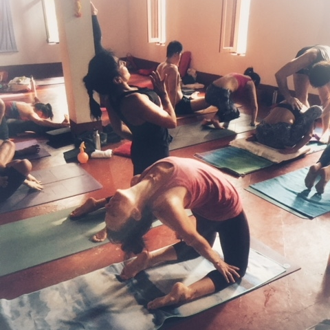 Ashtanga Mysyore Morning - Saturday 9th June, Beginning at 08.15am