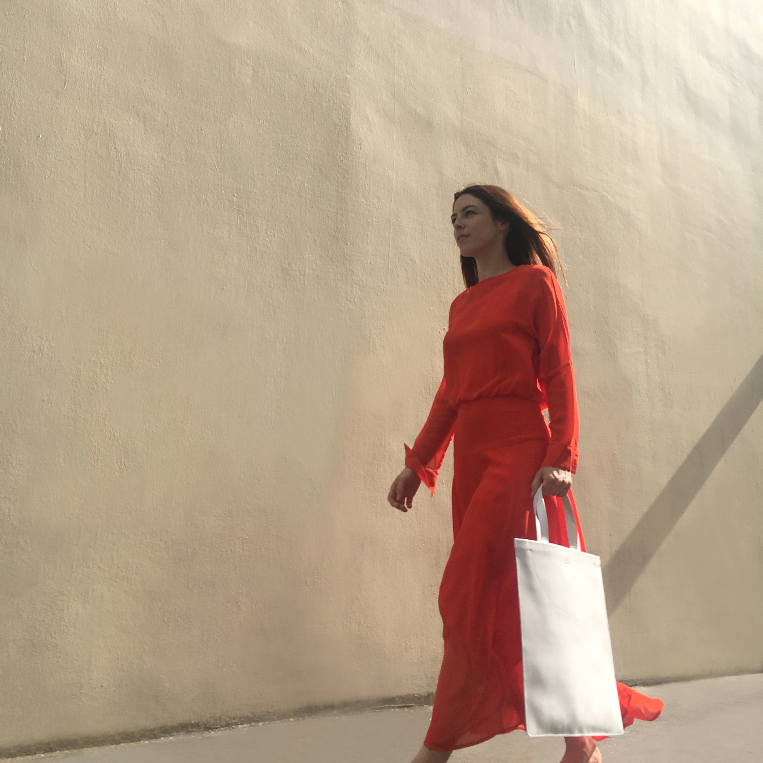 11a reddress TOTE_BEABUEHLER .jpg
