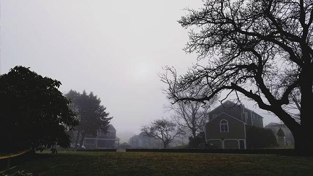 Foggy morning 🌫️ . . . #maine #twolights #fog #foggydays #capeelizabeth