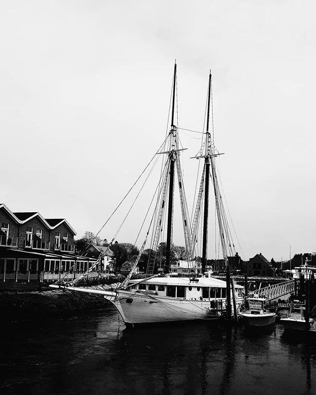 Kennebunkport ⛵ . . . . #maine #kennebunkport #sailboat #yacht #boats #boat #blackandwhite #blackandwhitephotography #harbor #harbor #dock #dockedboat