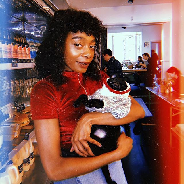 Dreams tonight of prancing through rainbow-lit meadows with this one it is then! 📸 😘 by @aweakmaj . @winnie__pug #mochi #puglife #pug #muchtoomuch #appestat #puppy #coffeeshop