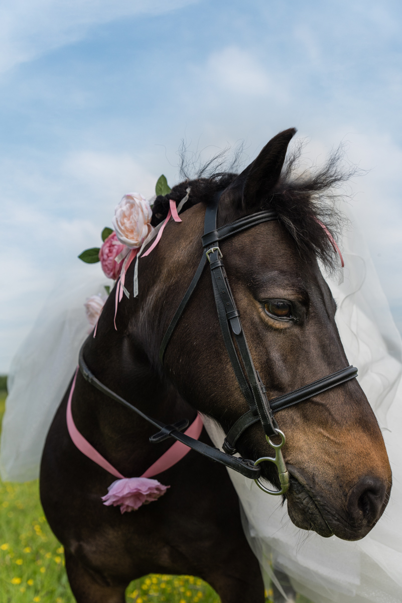 Lee & Brit Eagle Wedding-106.jpg