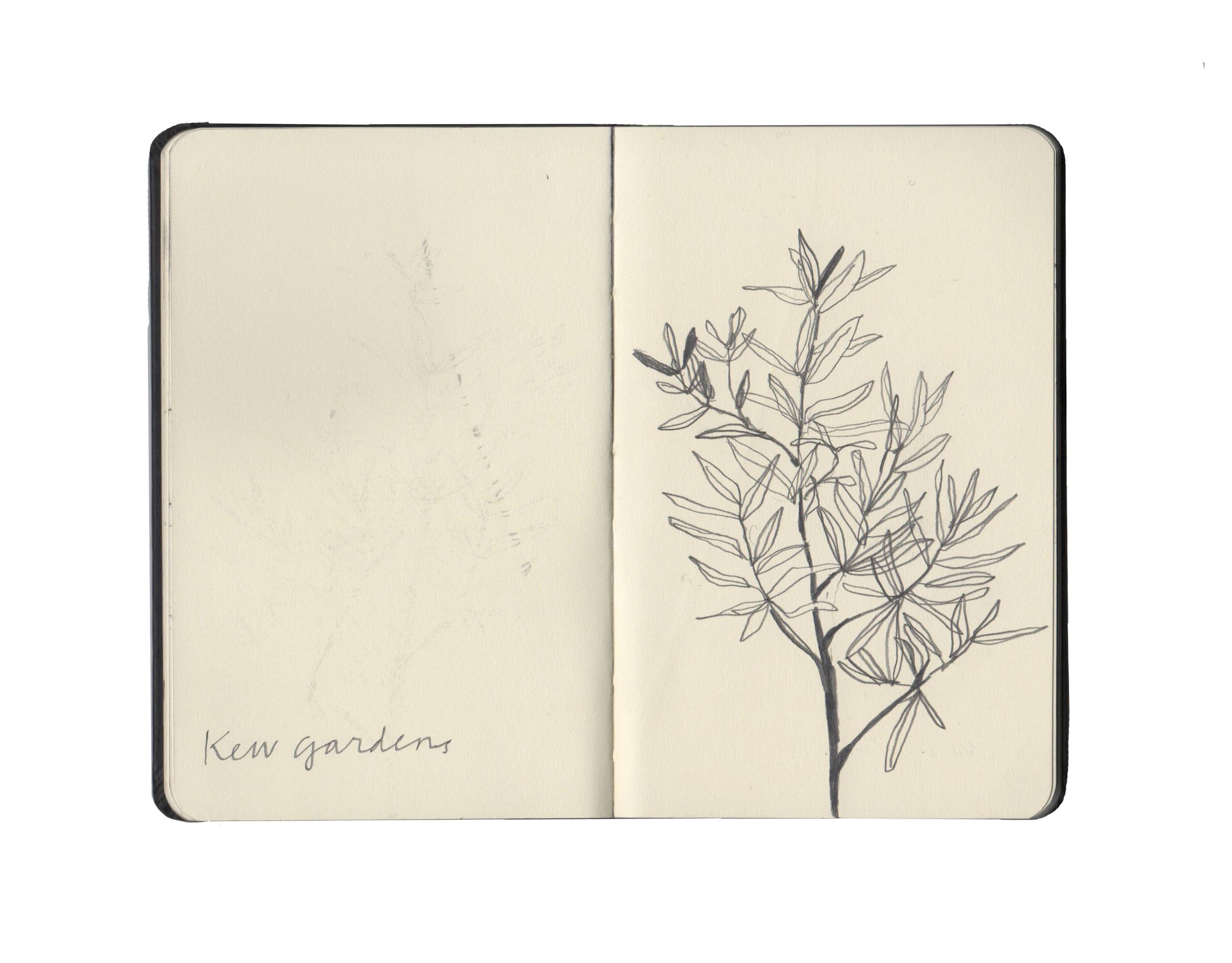 kew sketchbook 1.jpg