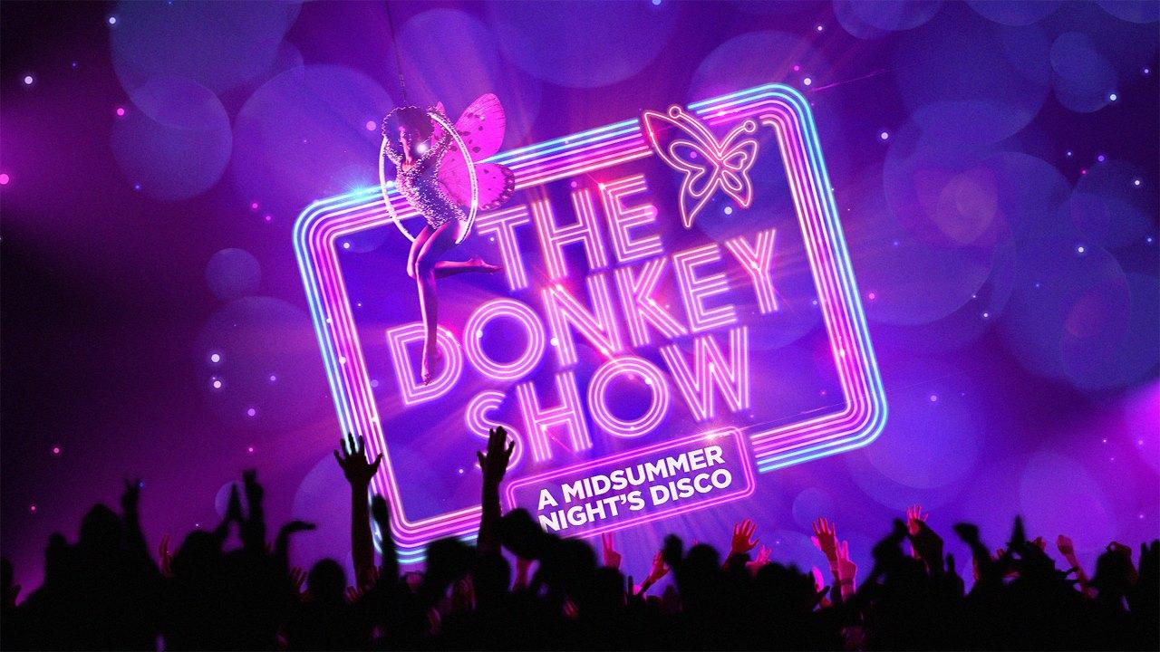 Vikki Stone Donkey Show
