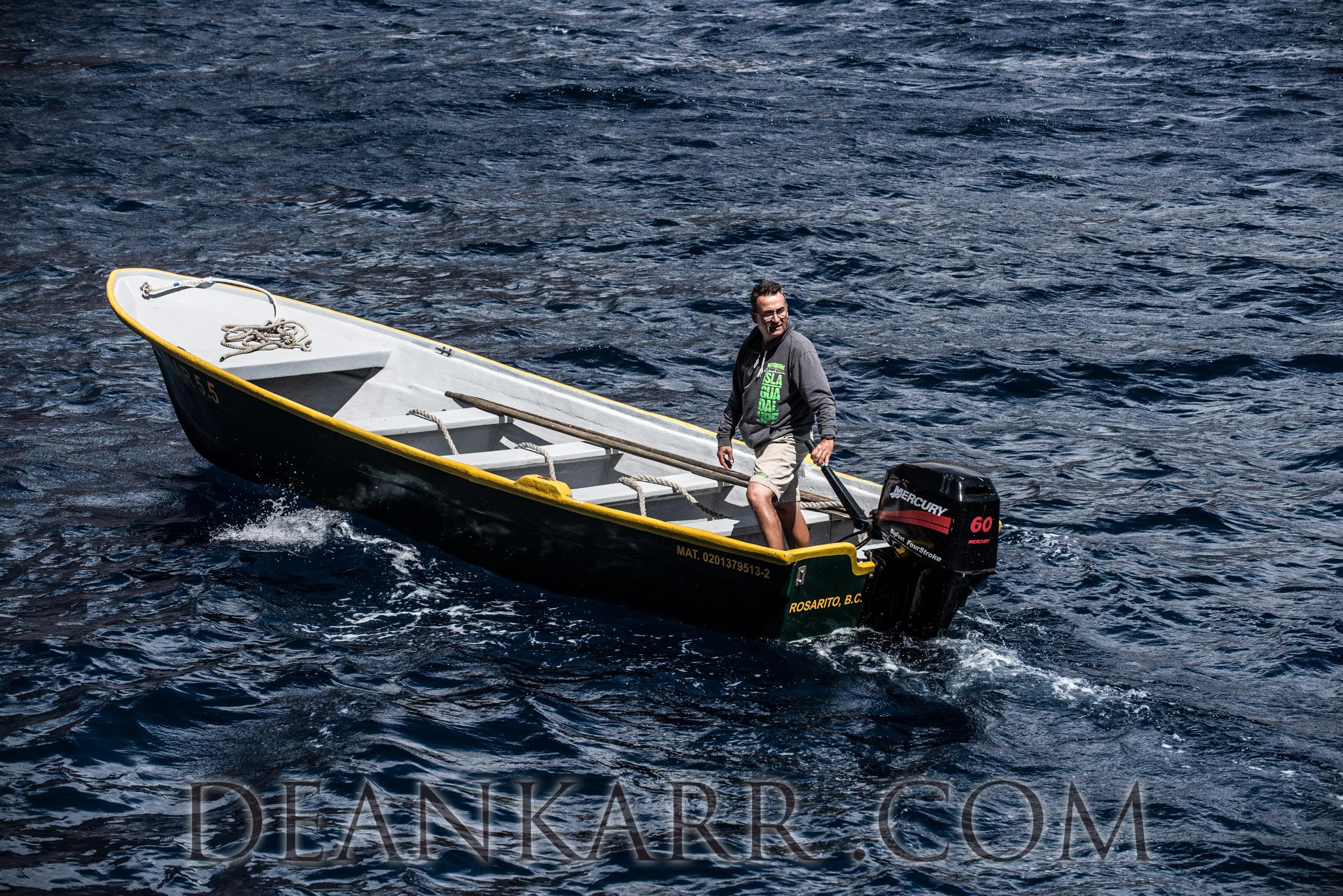 SHARKS 2016-538.jpg