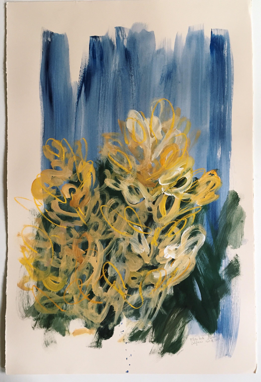 Yellow Bush Lupine, Point Reyes, California