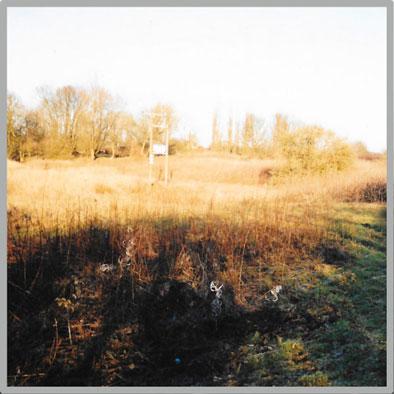 Retro-Kingfisher-lake8.jpg