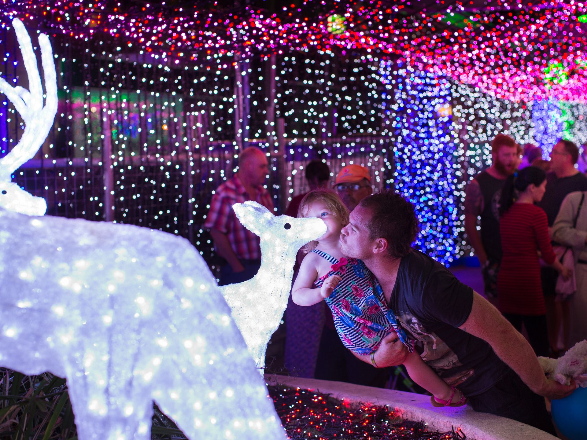 Over 1 million lights have been set up in Canberra, Australia, officially breaking the Guinness World Record for the largest LED image display. Visitors take photos on Nov. 29.  (Photo: Stefan Postles, Getty Images)