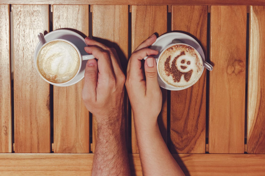 coffee panda.png