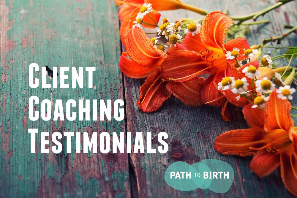 Fertility Infertility, TTC, Pregnancy Life Coaching