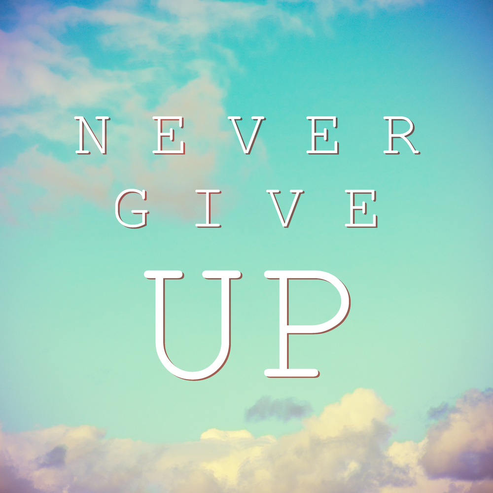 Never Give Up TTC Infertility Fertility