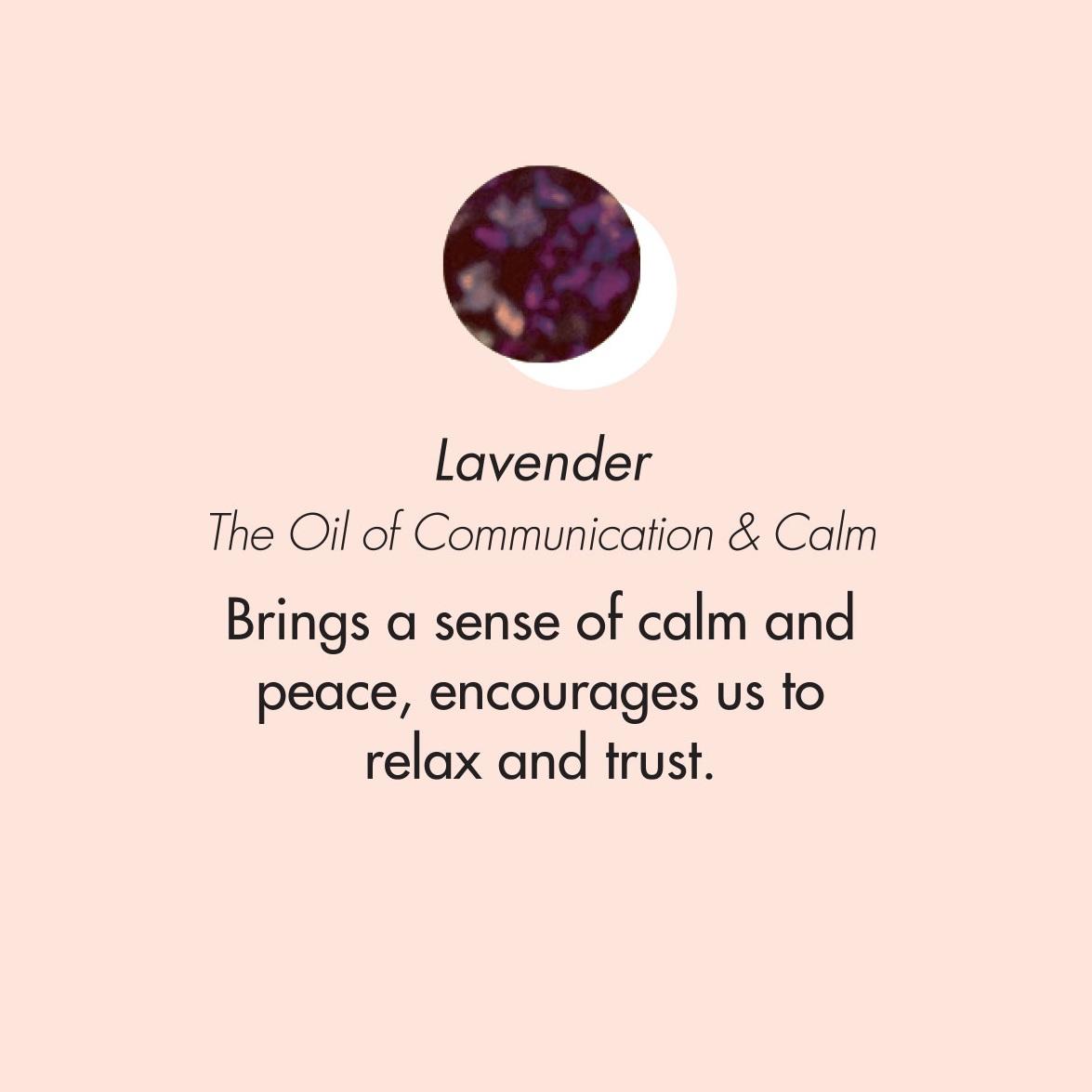 ptb_oils_lavender.jpg
