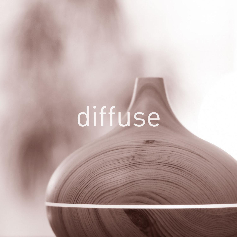 ptb_diffusion.jpg