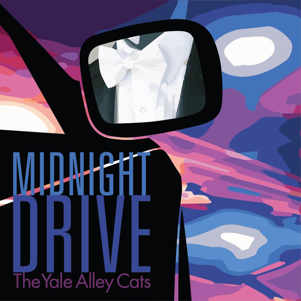Midnight Drive (2017)