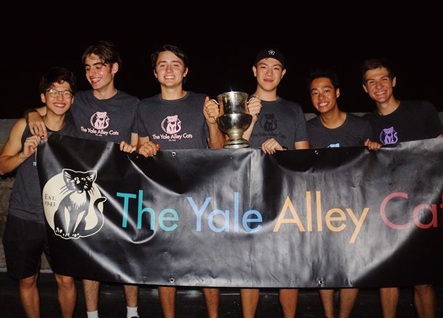 The Yale Alley Cats Class of '23! We could not be more excited to welcome our six newest kittens, Seoho Kim '23, Adrien Rolet '23, Owen Wheeler '23, Alexander Wang '23, Carl Viyar '23, and Yaakov Huba '23 to our Alley Cat family! This is just the beginning of an incredible 76th season, and we're ecstatic to have you all along for the ride! #CAW