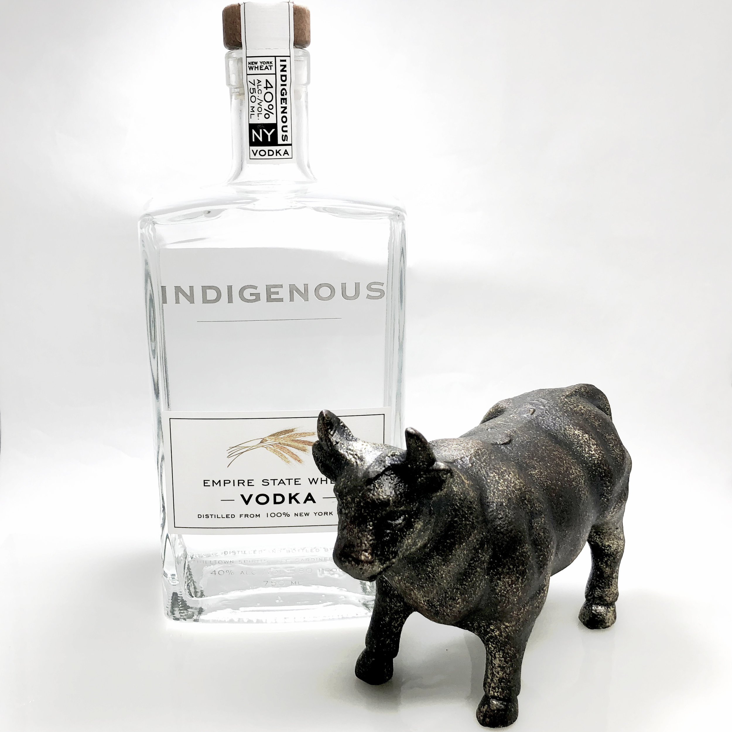 indigenousandbull.jpg
