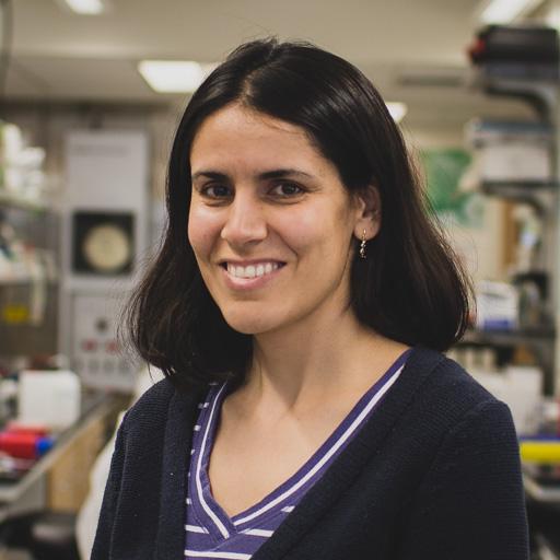 Sarah Ahmadi  (2013-2014)