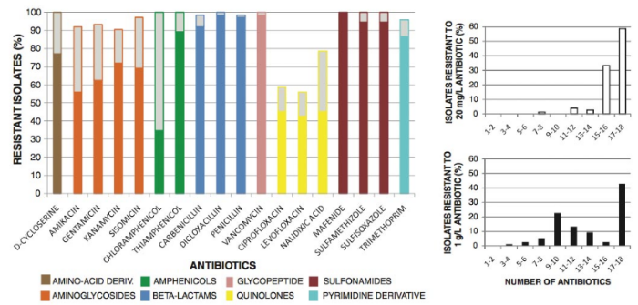 Bacteria Subsisting on Antibiotics. Dantas, Sommer  et al.   Science  2008.