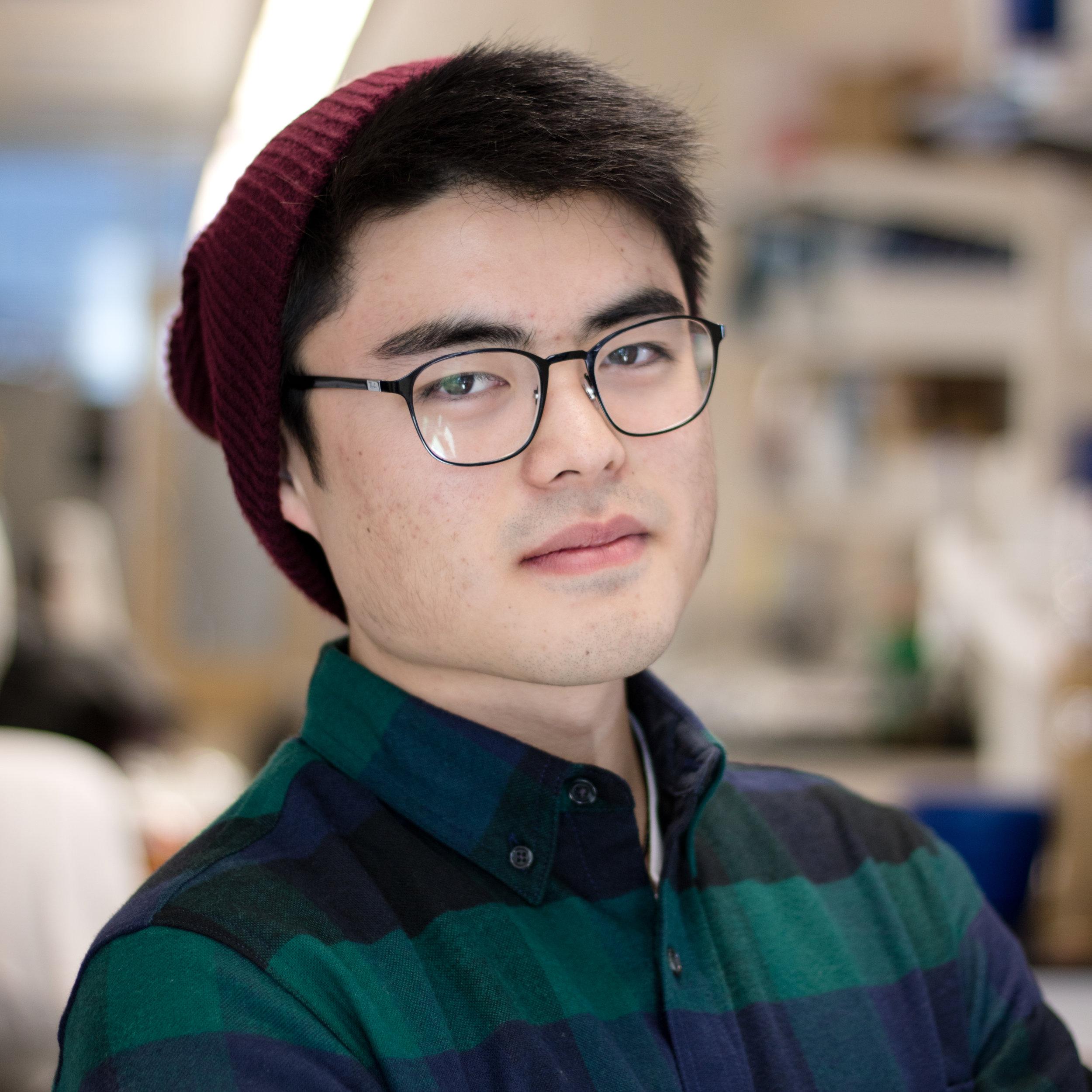 David Chong  d.chong [at] wustl.edu