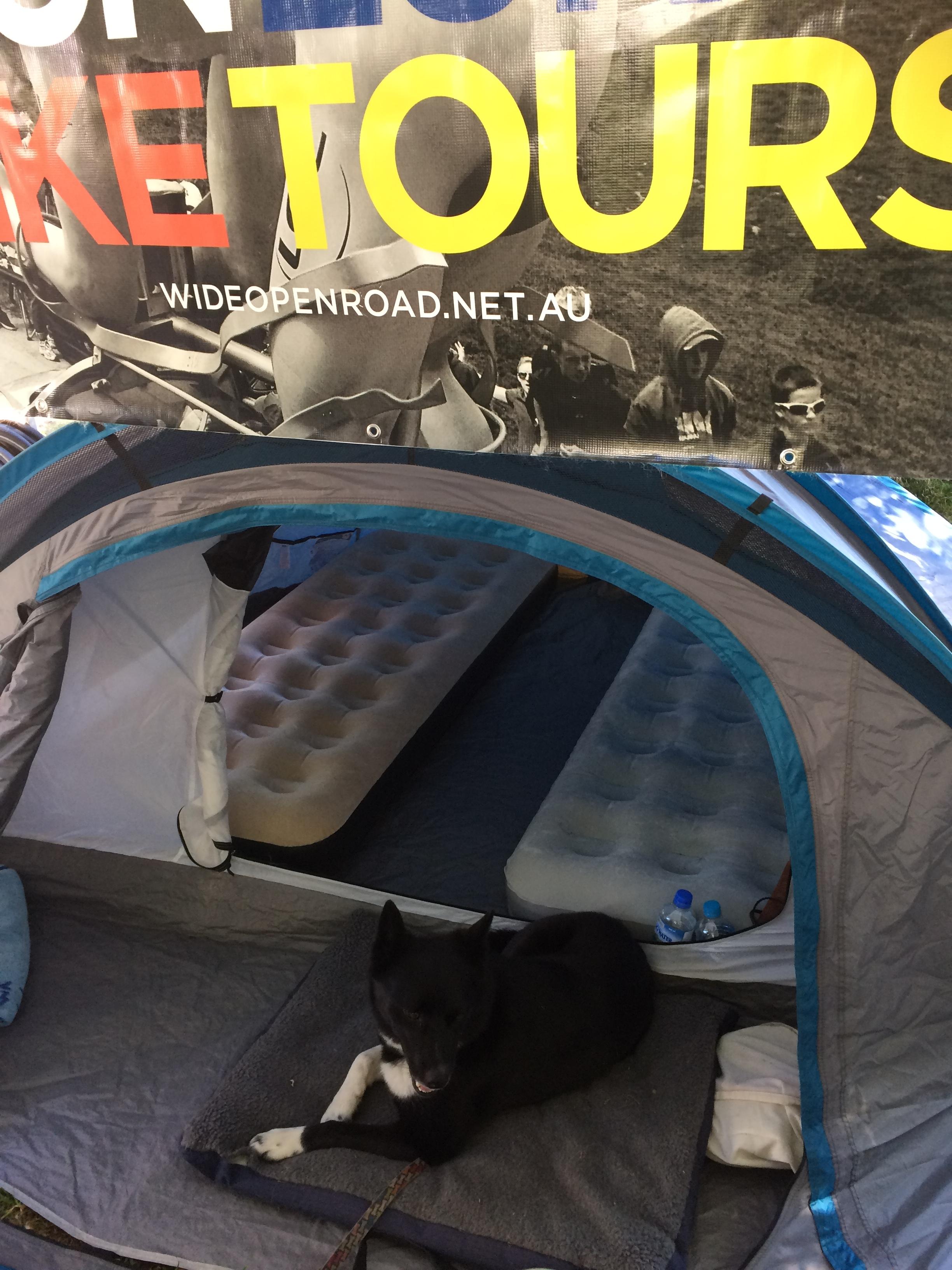 WOR tent setup!
