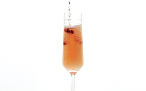 forager's fizz