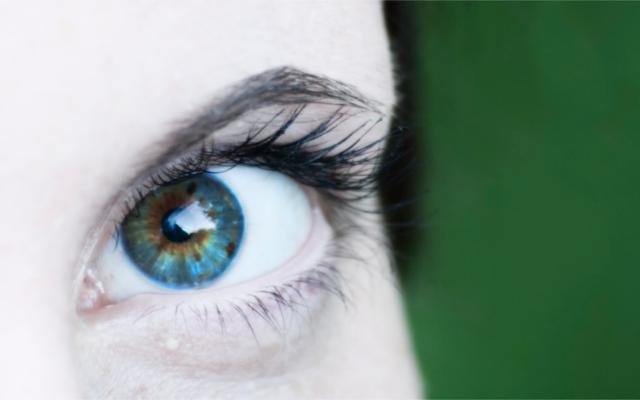 blueberry eye health