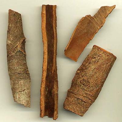 cassia bark in raw state