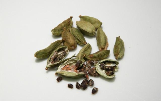cardamom seeds botanical