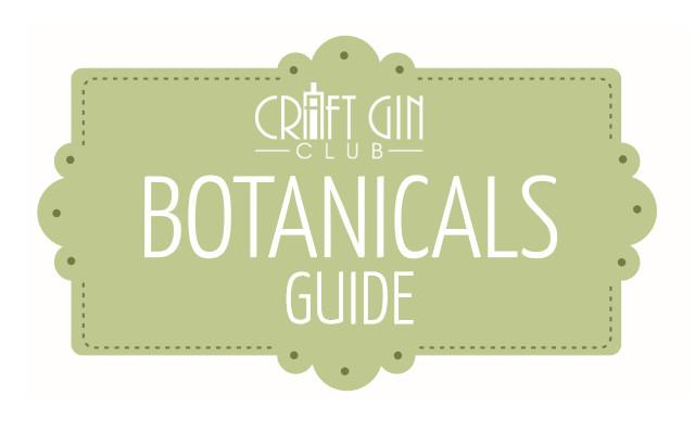 botanicals guide craft gin club