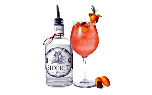raspberry gin and tonic siderit cocktail