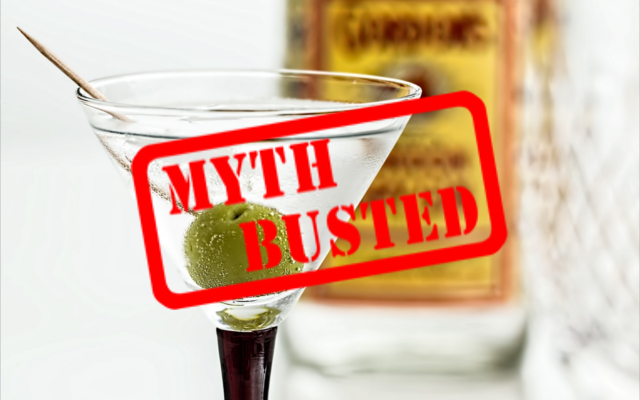Gin martini myths busted