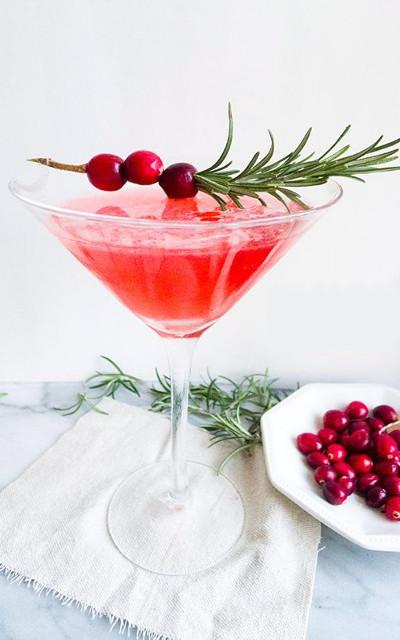 Winter Cranberry Martini gin drink