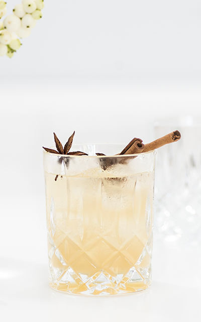 Winter Gin and tonic nutmeg cinnamon sticks and orange christmas spiced cocktail