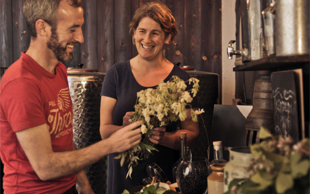 Flowers in vase to be used as botanicals to flavour Glendalough gin