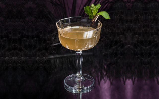 Wild martini and mint garnish in martini glass