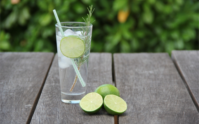 Gin and Tonic slice of lime and sprig of rosemary