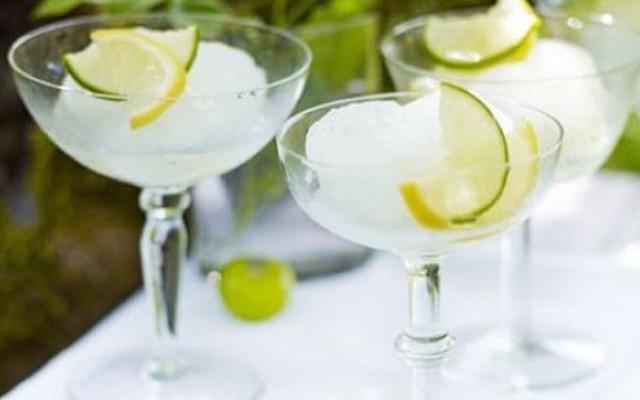 gin+and+elderflower+sorbet.png