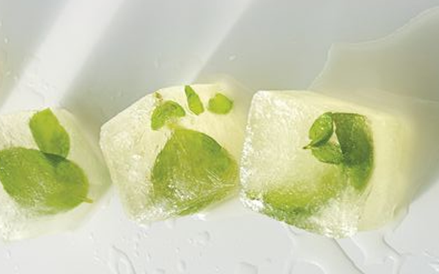 Vermouth Basil Ice Cube.png