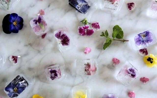 floral ice cubes.png