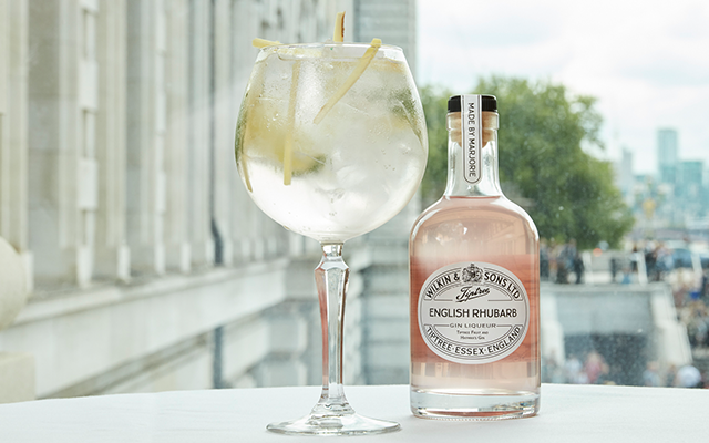 Tiptree Rhubarb Gin Liqueur Gin and Tonic.png